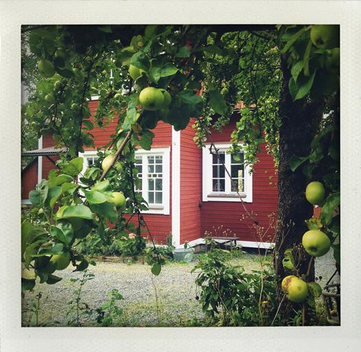 Hemma hos Maria, Fredrik och Nim